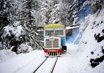 Golden Triangle and Shimla, Manali Tour